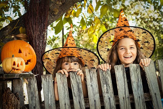 HalloweenRecipes_is000048192136