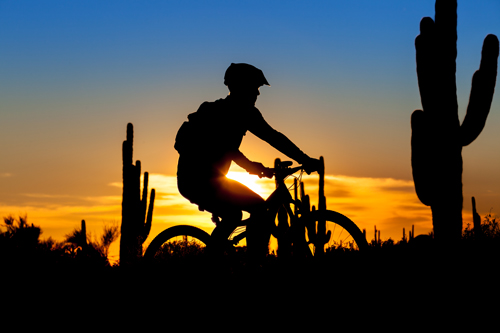 PHX Mountain Biking