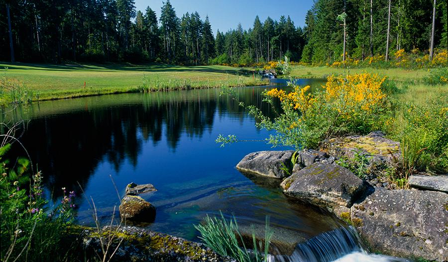 Campus Fairways - Golf Course