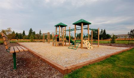 McAllister Meadows - Playground