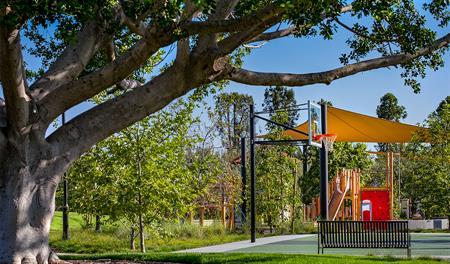 Eucalyptus Park in Irvine