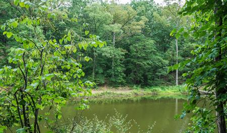 Lake in Northern Virginia