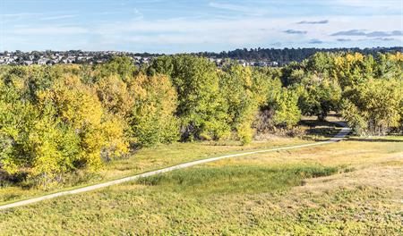 Walking trails at Overlook at Cherry Creek