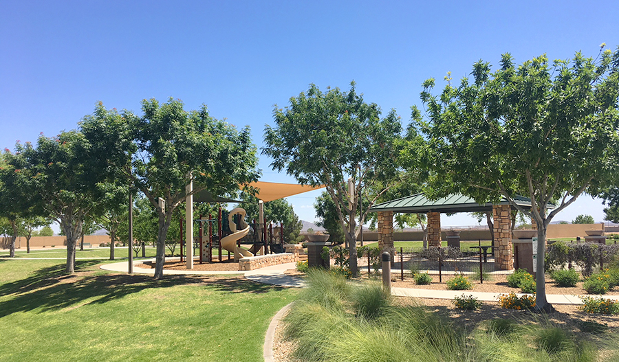 Community park at Las Brisas in Phoenix