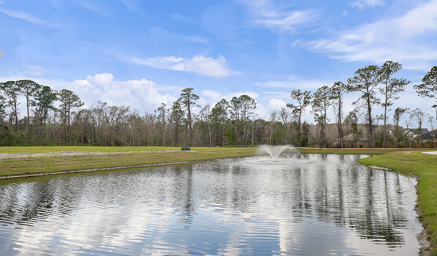 Pond in Cameron Pointe in JAX