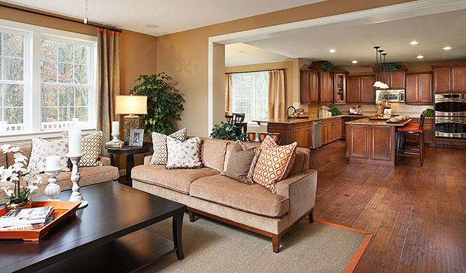 Charlotte model home great room