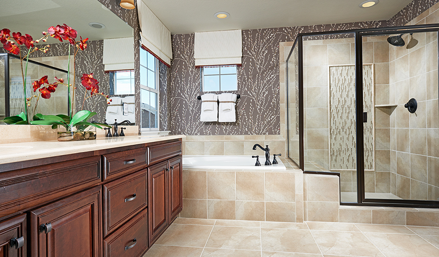 Master bath with a walk-in shower in the Dillon floor plan