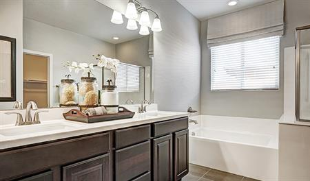 Master bath in the Dominic floor plan
