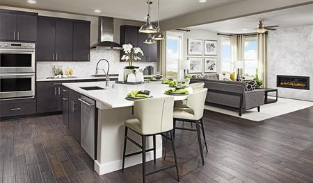 Kitchen and family room of the Daley floor plan