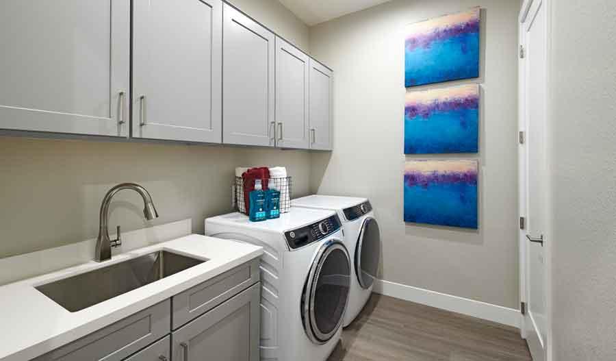 Laundry of the Darius plan